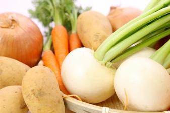 野菜・果物の保存方法 常温・冷蔵・冷凍庫どこにしまう?