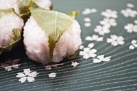 春に食べたいさくらもち桜餅の簡単な作り方 道明寺粉レシピ